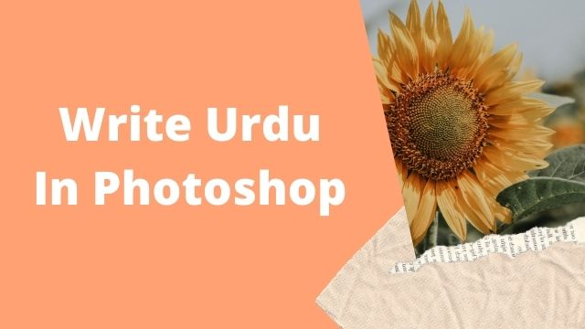 How To Write Urdu in Photoshop Without In page, Simple 3 Steps
