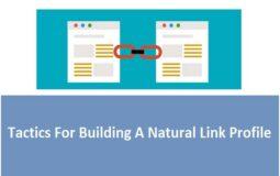 Tactics For Building A Natural Link Profile