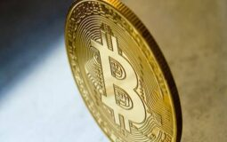 What Did Investors Look In Bitcoin Trading Before Investing?
