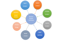 What is included in a business analysis?